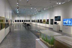 Elliott Museum